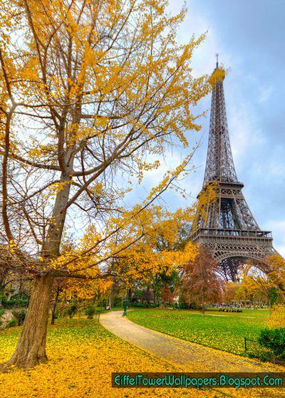cute paris wallpaper eiffel tower - photo #35