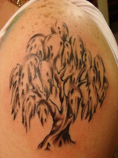 My Tattoo Designs Cherry Tree Tattoo