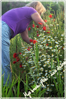 Polne kwiaty i instrukcja , jak zrobic wianek z lawendy.