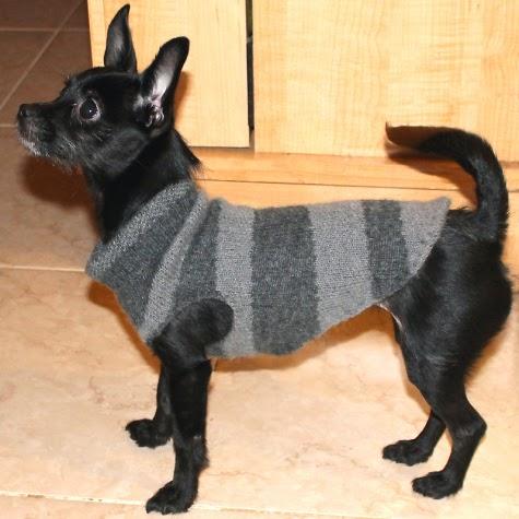 DIY: Abrigo para mascotas. Ideas, patrón y tutorial - yo elijo Coser