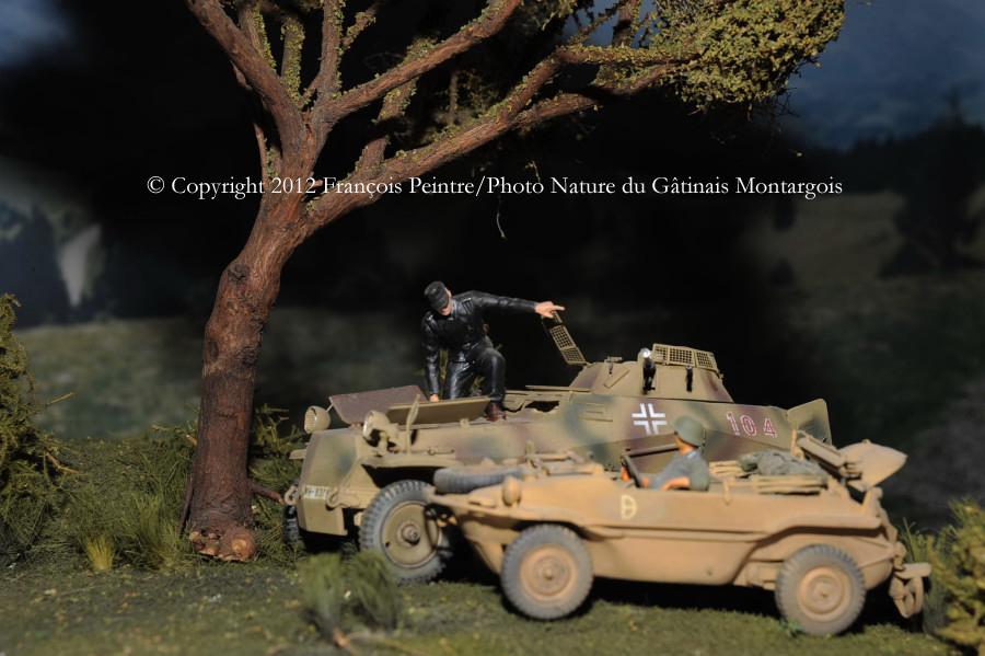 Sd Kfz 250/9 et schwimmwagen