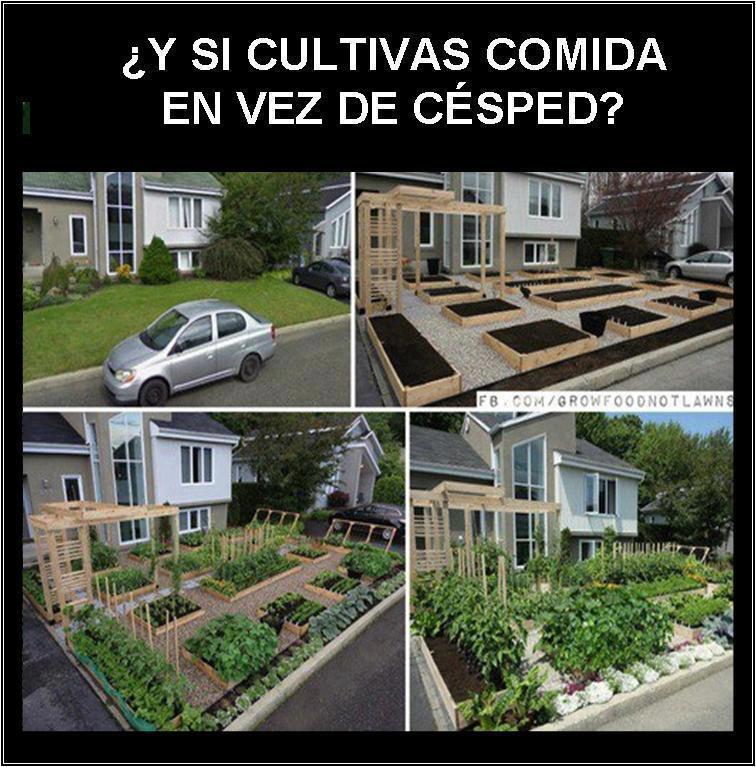 Mil ideas para la casa y el jardin - Ideas para jardines de casa ...
