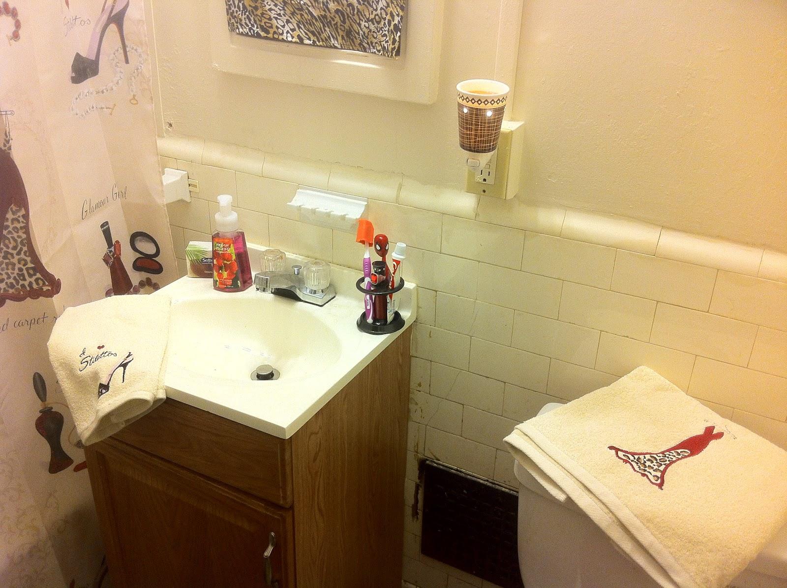 Midwest Fashionista: Bathroom Re-vamping : )
