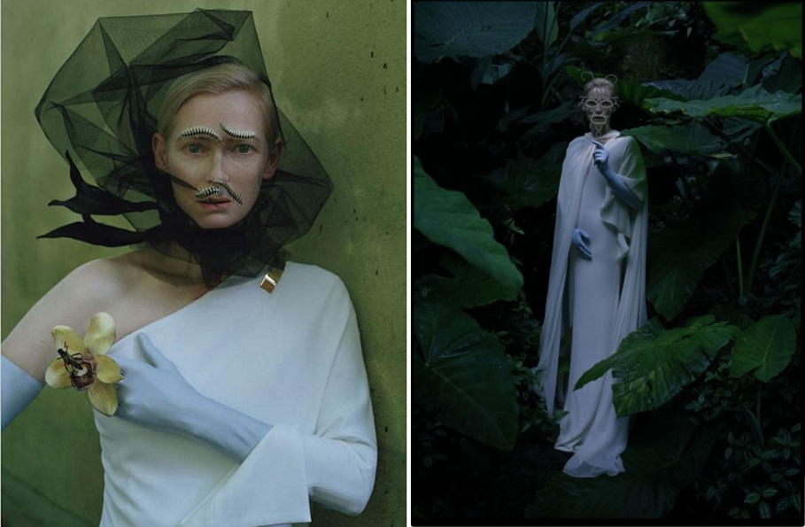 the fantastic fashion world tilda swinton para w magazine