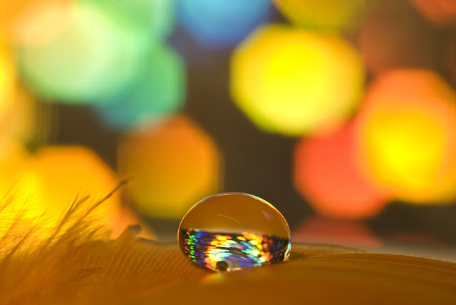 Colorful Drops Photography