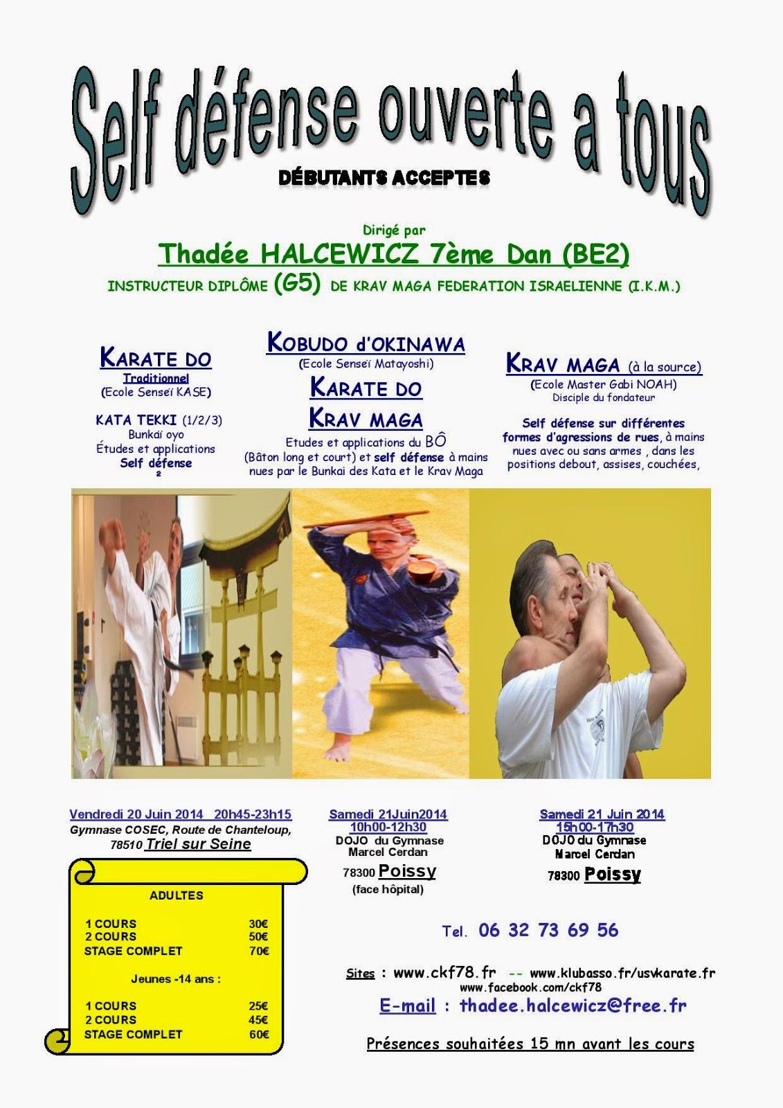 stage self défense ouvert à tous juin 2014 Thadée Halcewicz