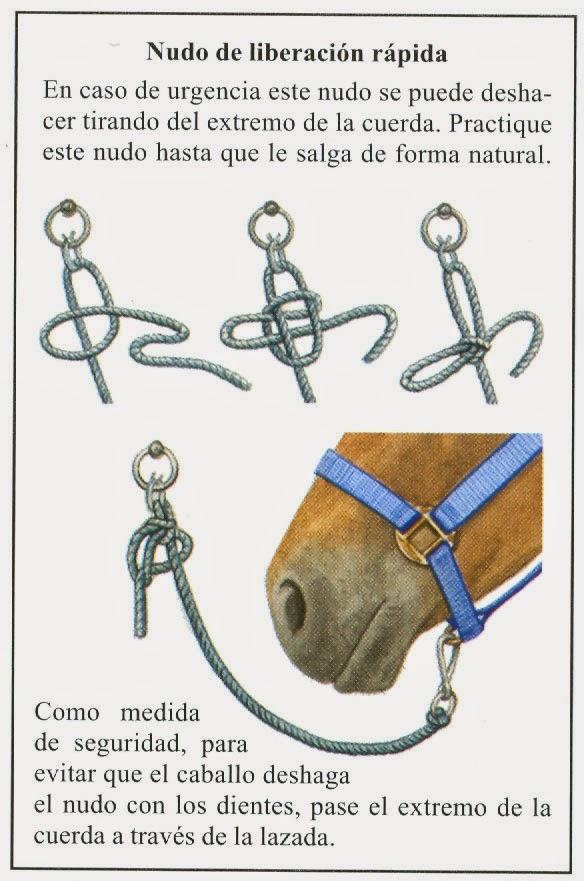Amo a los caballos agosto 2015 - Nudo para tendedero ...