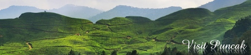 Visit Puncak - Enjoy fresh air and mountain scenery.
