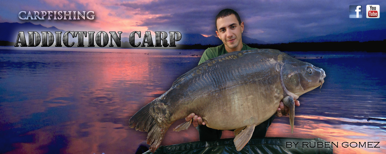 Addiction Carp