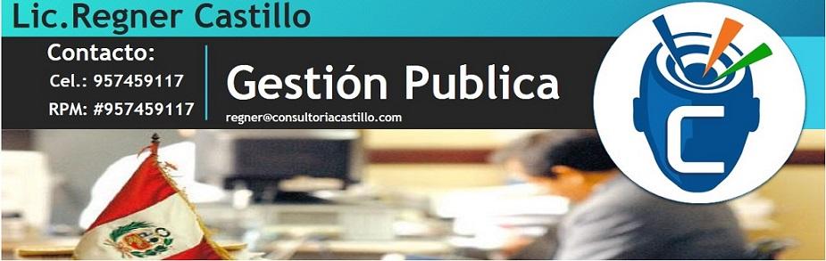 Gestión Publica Peruana