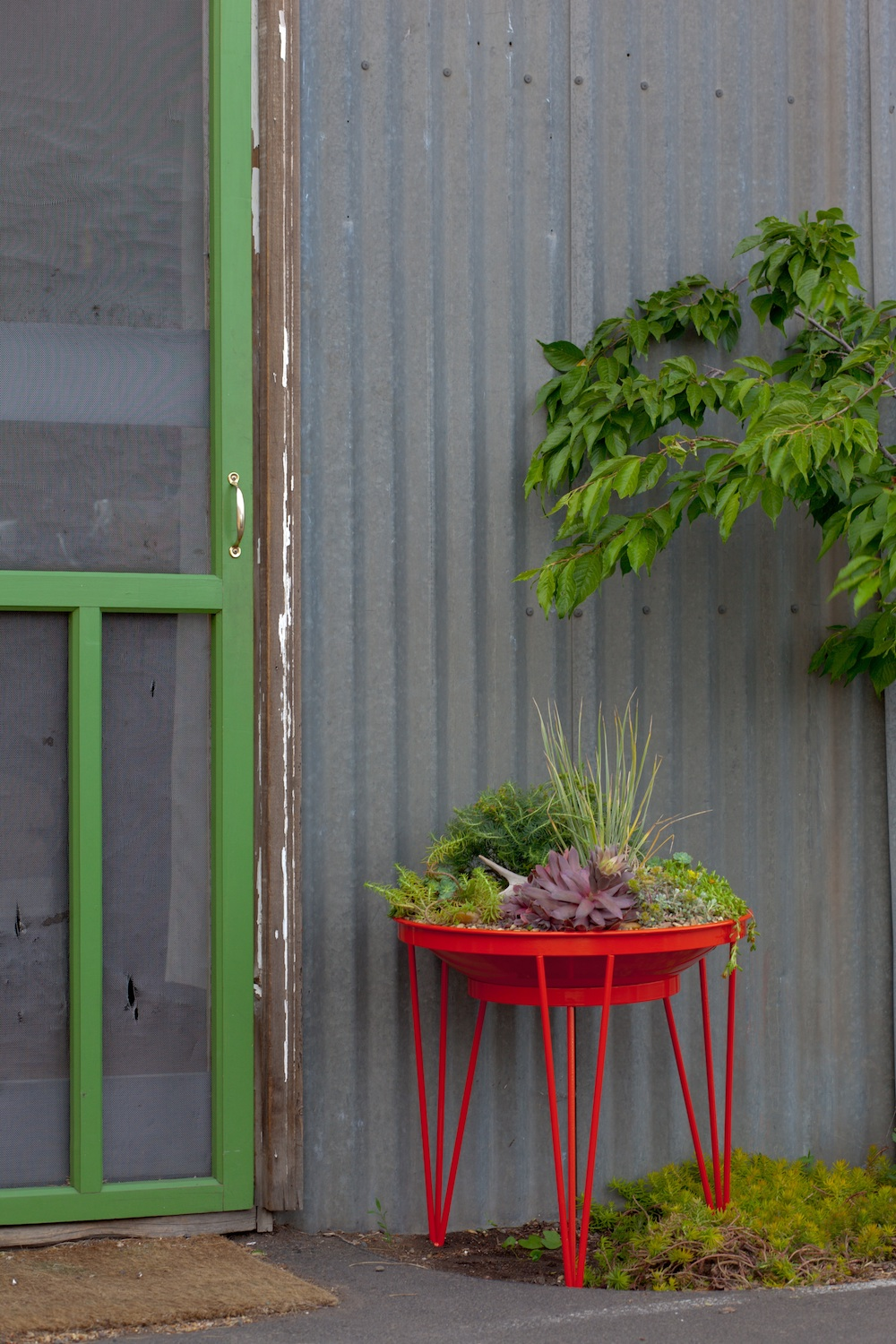Kate Presents Mid Century Modern Planters By Steel Life
