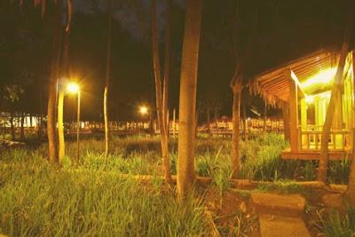 Village Nite