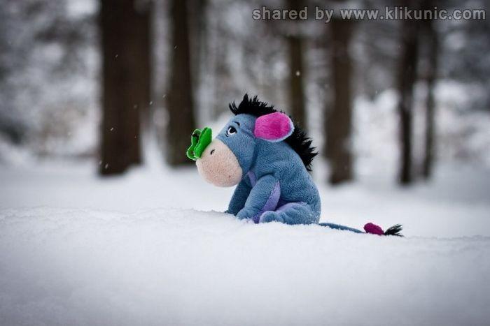 http://2.bp.blogspot.com/-C3gkALkA5VU/TXLdzVvcpvI/AAAAAAAAP5s/hoVbx8fh10U/s1600/winter_01.jpg