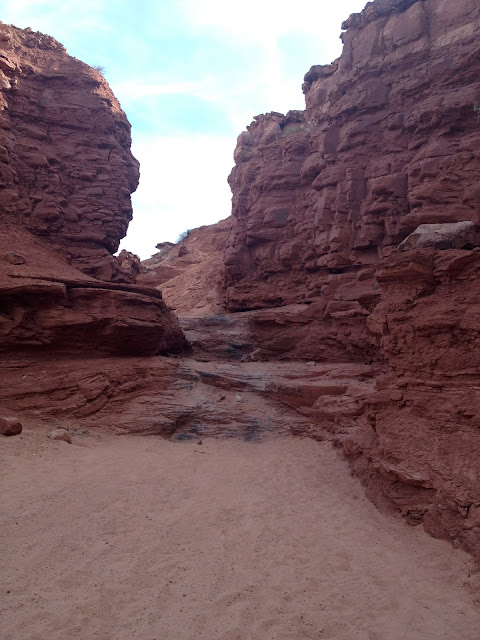 View of Tire Tracks on Hidden Canyon Jeep Trail from Below