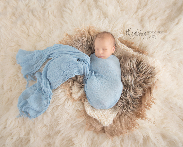 Newborn baby boy pictures | infant photos | Professional baby photographer | DeKalb, Sycamore, IL
