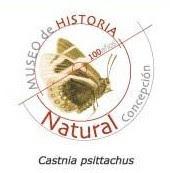 MUSEO HISTORIA NATURAL CONCEPCIÓN
