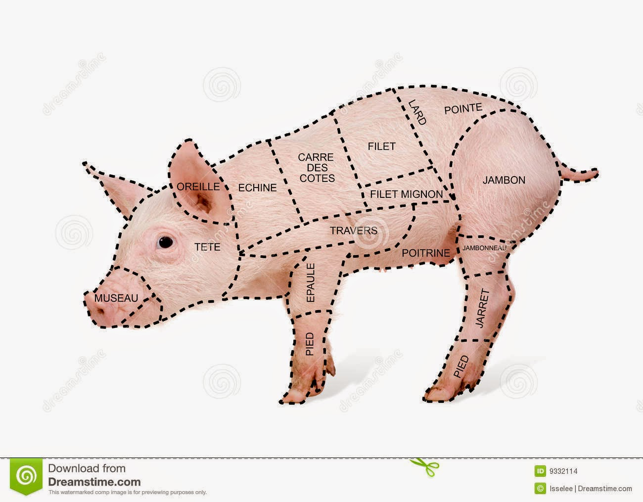 how to cut a pig