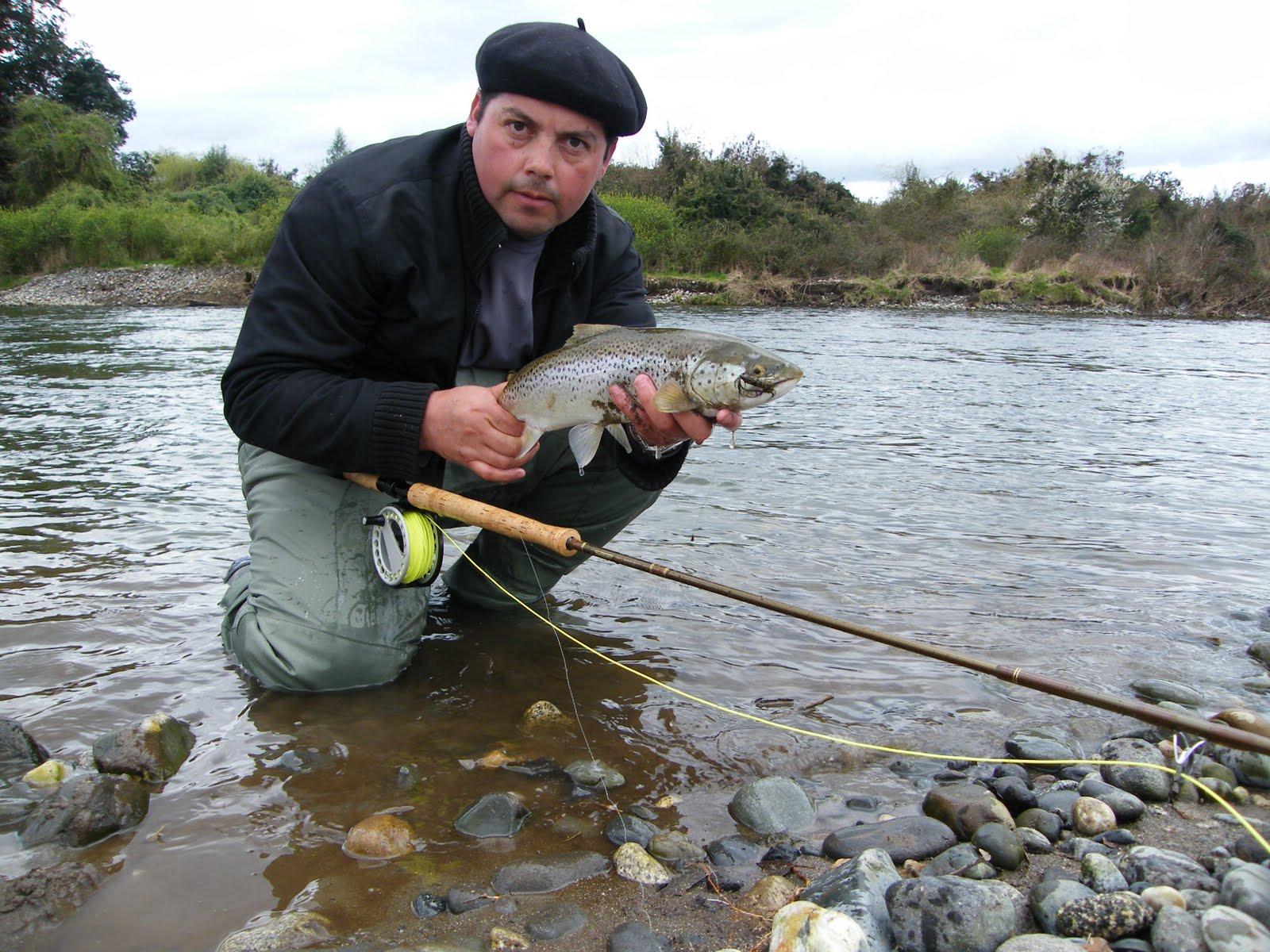 La pesca 377-3