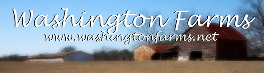 Washington Farms