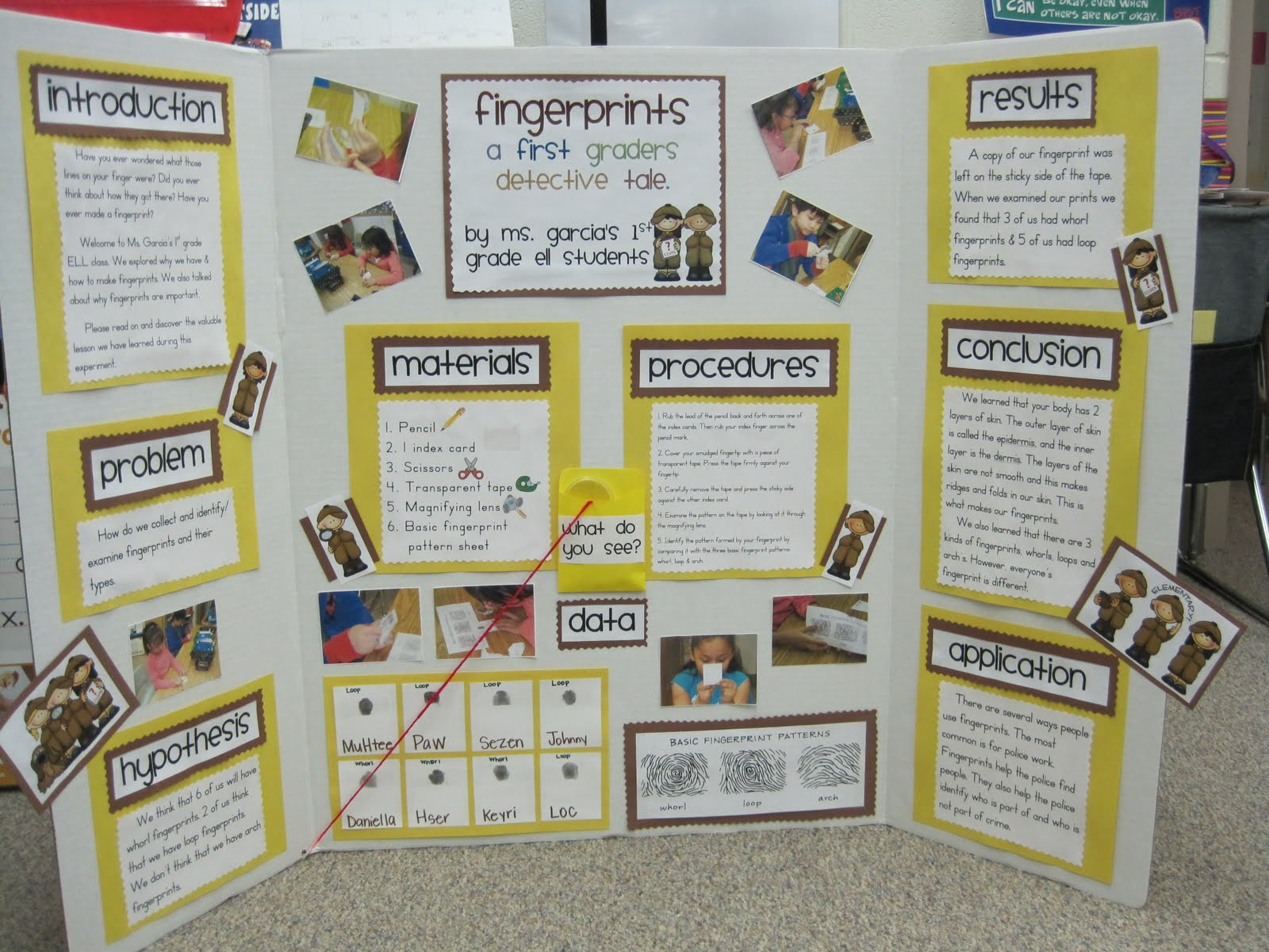 biology projects Hundreds of detailed science fair project ideas for all grade levels in a wide range of topics from aerodynamics to zoology.