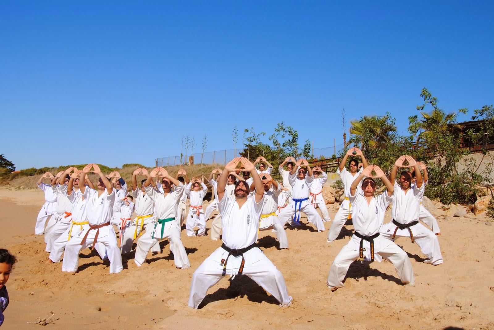 Budokan blog de artes marciales ii campamento de oto o - Artes marciales sevilla ...