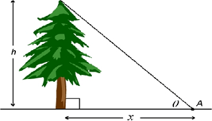 angle-of-elevation-example.png