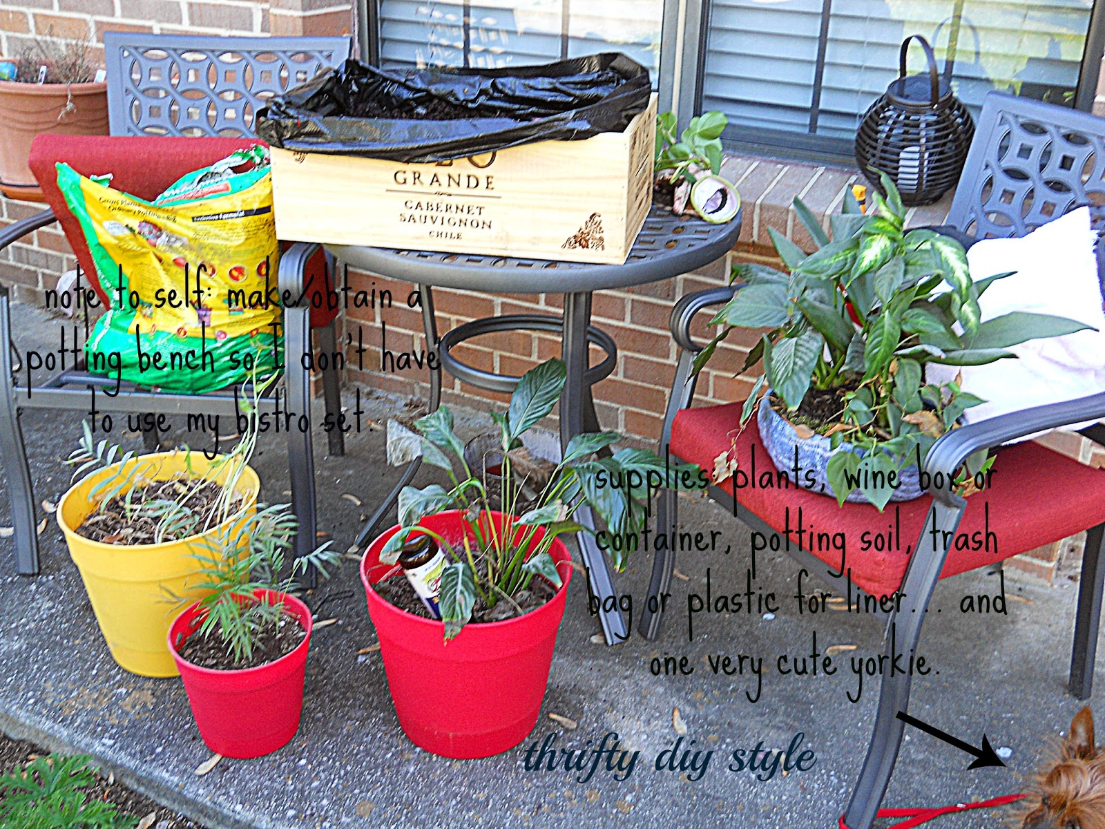 Thrifty diy style for Empty wine crates
