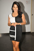 Pavani Reddy Glamorosu Photo shoot-thumbnail-16