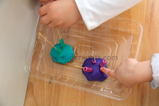 Development of Pincer Grasp Pincer Grasp