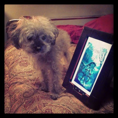 Murchie standing on a bed beside an e-reader with cover of The Willful Princess and the Piebald Prince displayed on its screen. The cover art depicts an indistinct young woman standing beside a horse mottled in black and white.