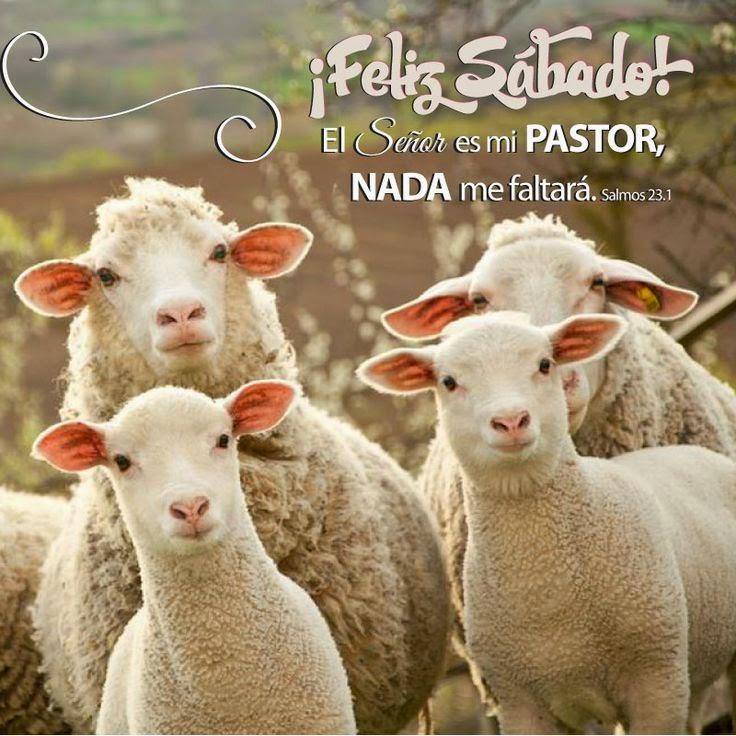 Reflexion Cristiana Para El Sabado
