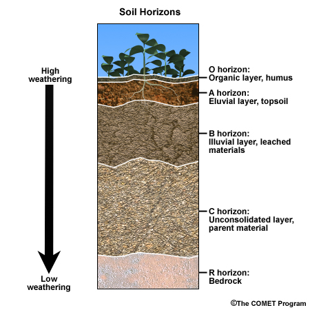 Agricultural science for jss two for What are the different layers of soil