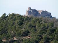 Detall de la Canònica de Sant Vicenç de Cardona des de la zona de Cal Cabreta