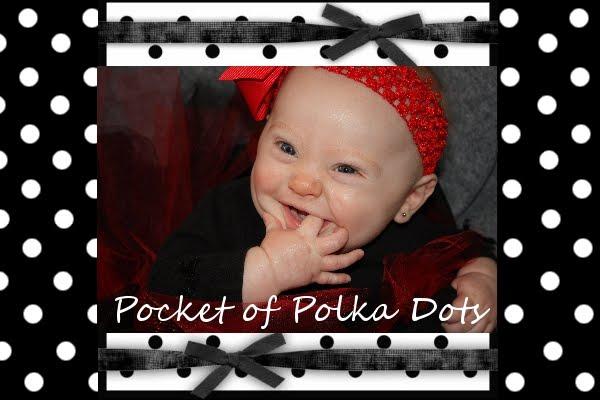 Pocket of Polka Dots
