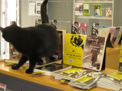 La cua de palla:retrat en groc i negre amb gat