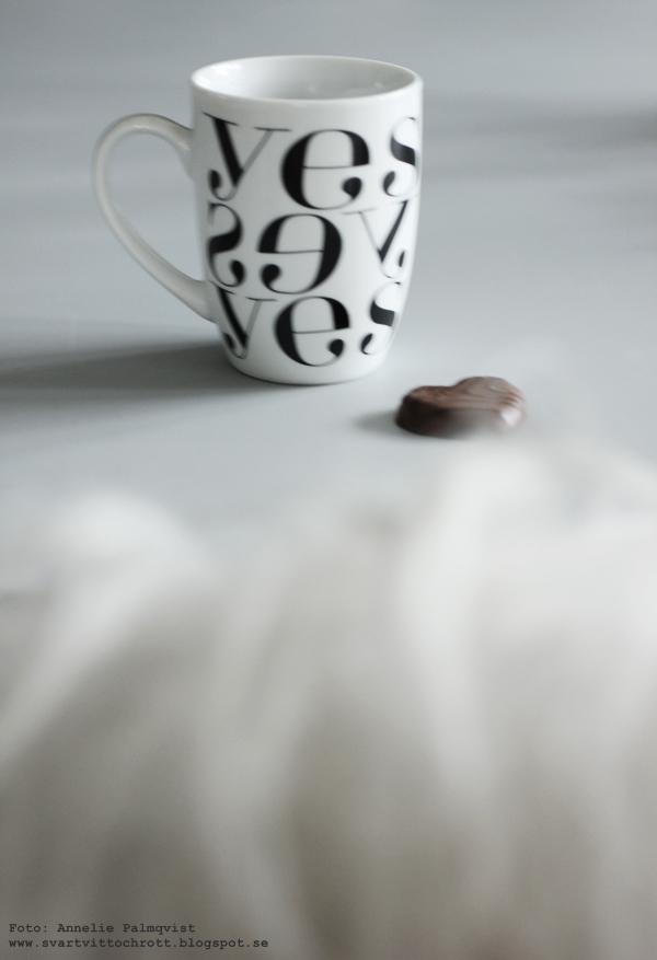 yes mugg, svart och vitt, svartvitt, svartvit, svartvita, svart, vitt, vit, vita, inredning, inredningsblogg, blogg, annelies design, anneliesdesign, eiffeltorn, eiffeltorn till inredningen, webbutik, webbutiker, webshop, fårskinn, isländska fårskinn,