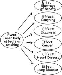 cause and effect cause and effect essay the inner body effects of smoking
