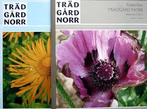 Intresserad av en trevlig trädgårdstidning?