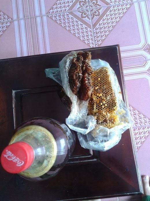 Tac dung cua Mật Ong Rừng, mật ong rừng tốt nhất 2