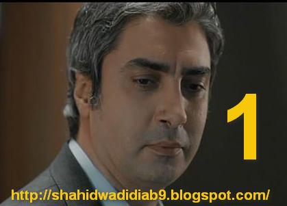 http://shahidwadidiab9.blogspot.com/2014/09/wadi-diab-9-ep-1-230.html