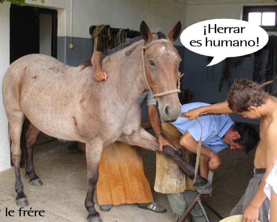 """""""herrar"""", """"errar"""", """"error"""", """"herradura"""", """"caballo"""", """"humano"""""""