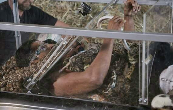 Karanvir sleeping with snakes in a packed glass box during Fear Factor Khatron Ke Khiladi stunt