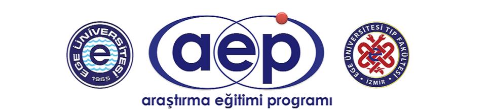Araştırma Eğitimi Programı