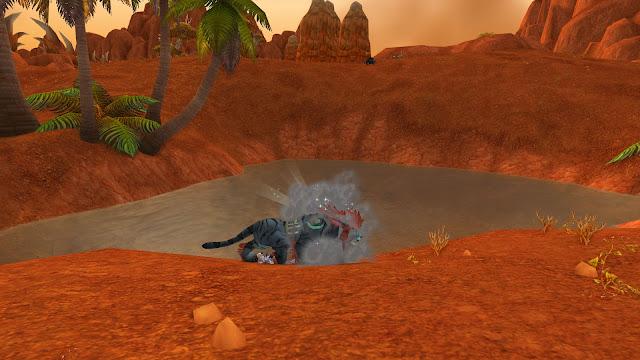Druide Katzengestalt