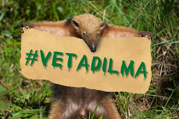 Veta Dilma e o Novo Código Florestal