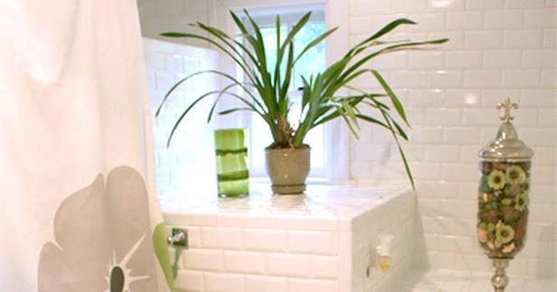Modern Furniture Colorful Shower Curtains Design Ideas 2012