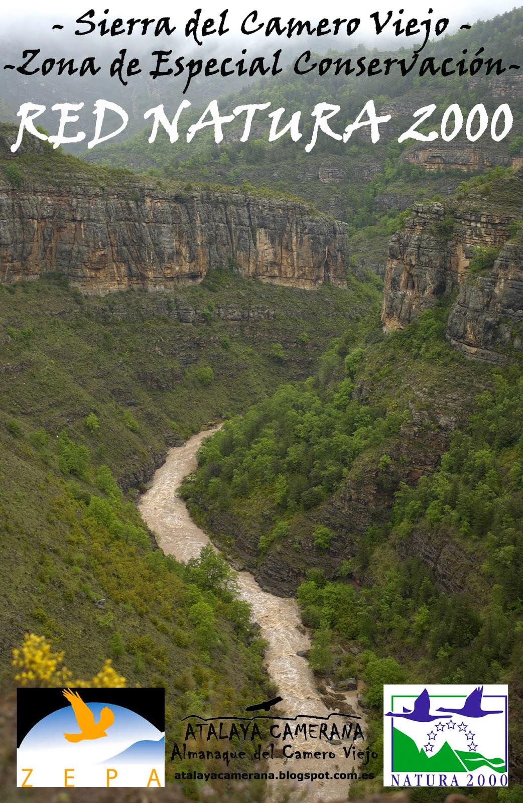 La Sierra del Camero Viejo queda regulada como Zona de Especial Conservación (ZEC) de la misma manera que ya era Zona de Especial Protección Para las Aves (ZEPA).