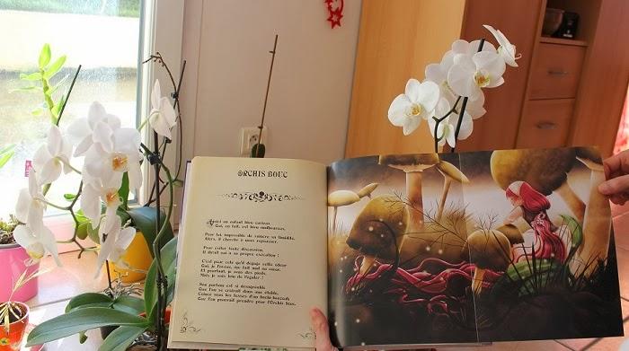 Rêves d'orchidées - Cédric Janvier & Cathy Delanssay