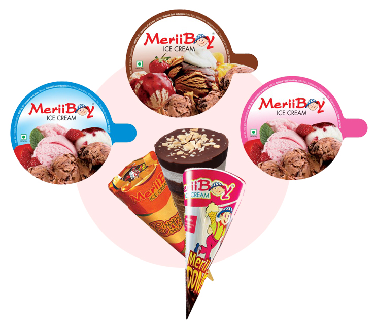 organization study at meriiboy ice cream