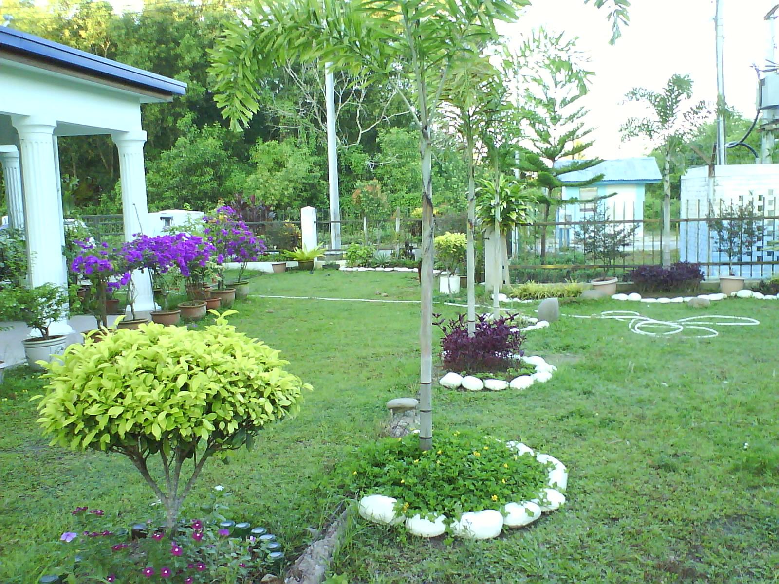 landskap halaman rumah gambar images